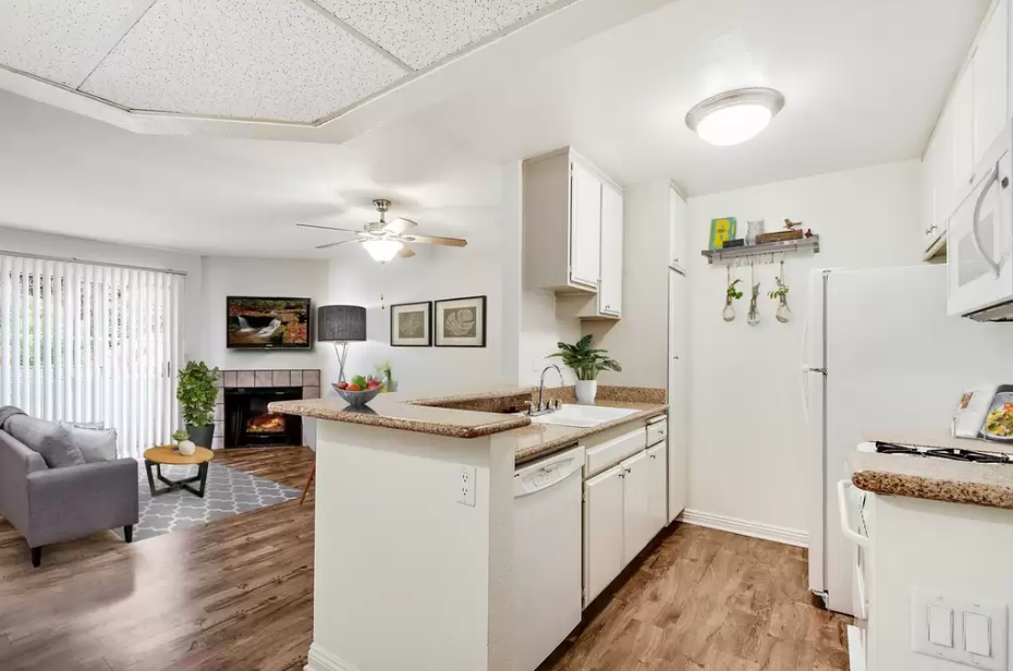 4 bedroom apartments for rent